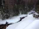 Bob Roberts Houdek Creek in winter