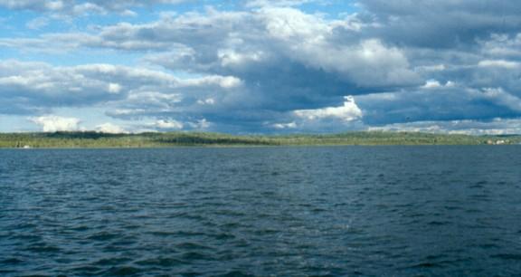 Mebert creek greeno preserve the leelanau for Lake leelanau fishing