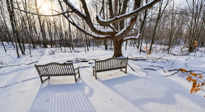 KScott_Houdek_benches_winter_fader