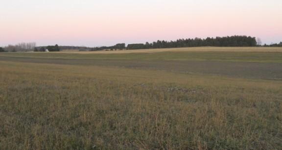Kelenski Farm
