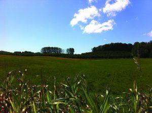 Esch Farm