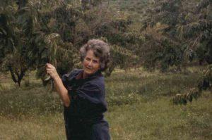 Margaret Hohnke