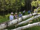 Docent Led Hike June 2014