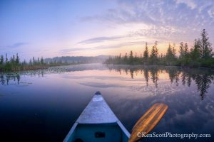 Cedar River Ken Scott