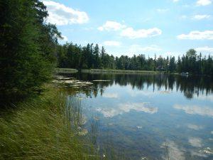 Duff Brook Lake Easement PP#5_NWcorner_lake_2