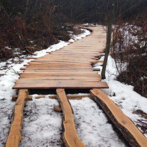 The six-foot wide boardwalk leads to the fishing pier on Cedar Lake