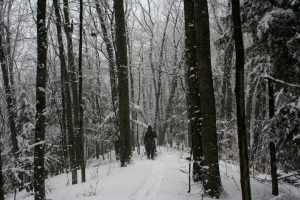 Krumwiede snowshoeing on trail contrast