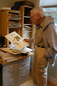 Dr. Palmer with fern specimens.